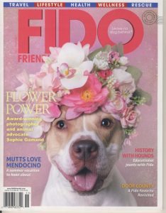 Fido Friendly Feature