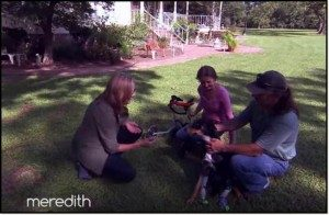 Meredith teams up with Lorenzo Borghese and Animal Aid USA to save abandoned and neglected dogs. Be sure to like and comment if you have enjoyed and subscribe if you want more from The Meredith Vieira Show!