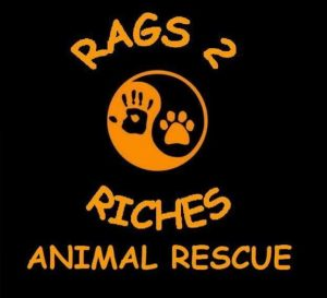 Rags 2 Riches Animal Rescue